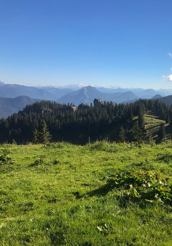 Blick auf das Spitzsteingebiet